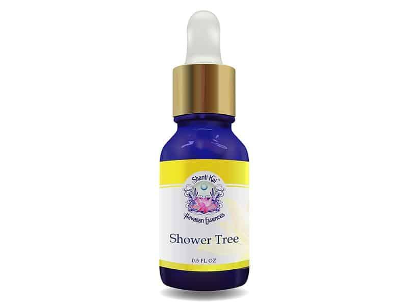 Shower Tree Master Flower Essence
